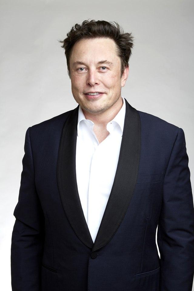 Elon Musk Gap Year
