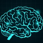 What Can Teachers Learn by Strapping Brain-Monitoring Devices to Students?
