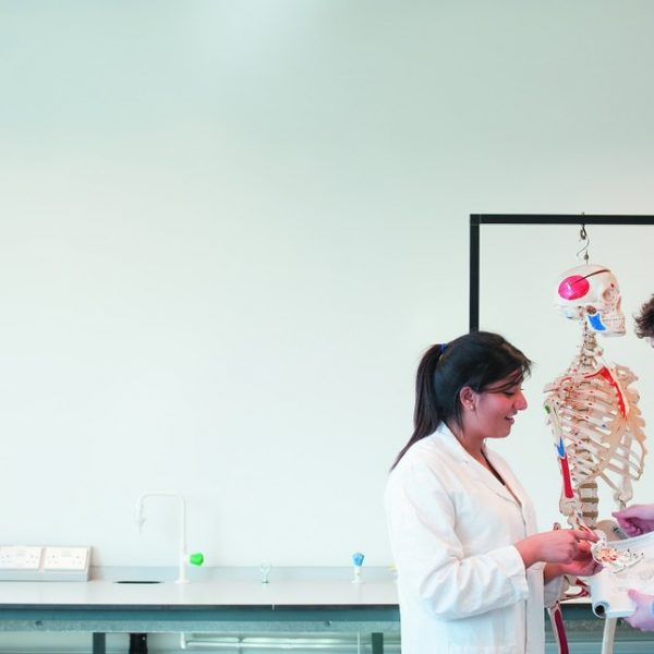 Important Things to Know About Medical School Admissions